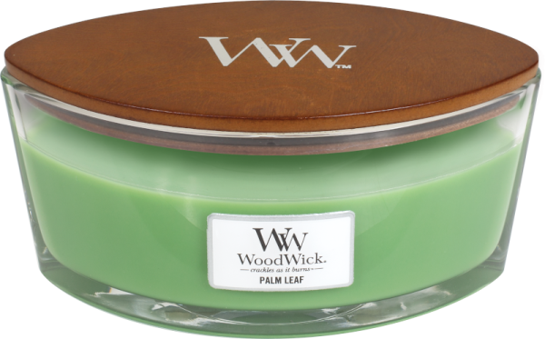 Palm Leaf Ellipse 454g Duftkerze von WoodWick